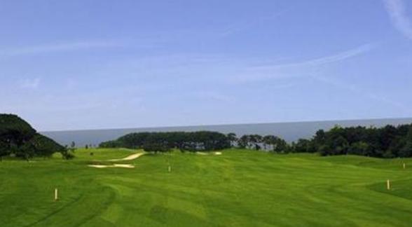 关于国际高尔夫联合会,你知道多少?